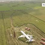 Airbus A321: un birdstrike finito bene